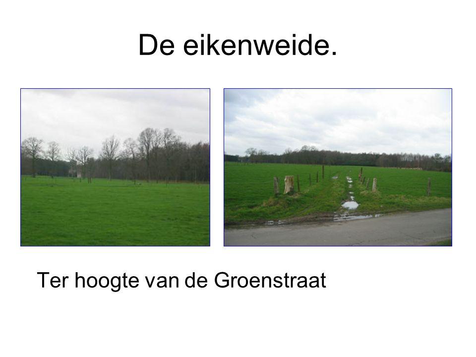 De Hanewegel Ter hoogte van de Groenstraat