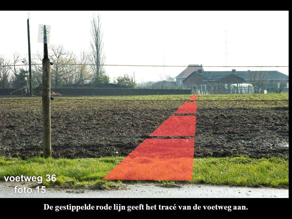 De gestippelde rode lijn geeft het tracé van de voetweg aan.