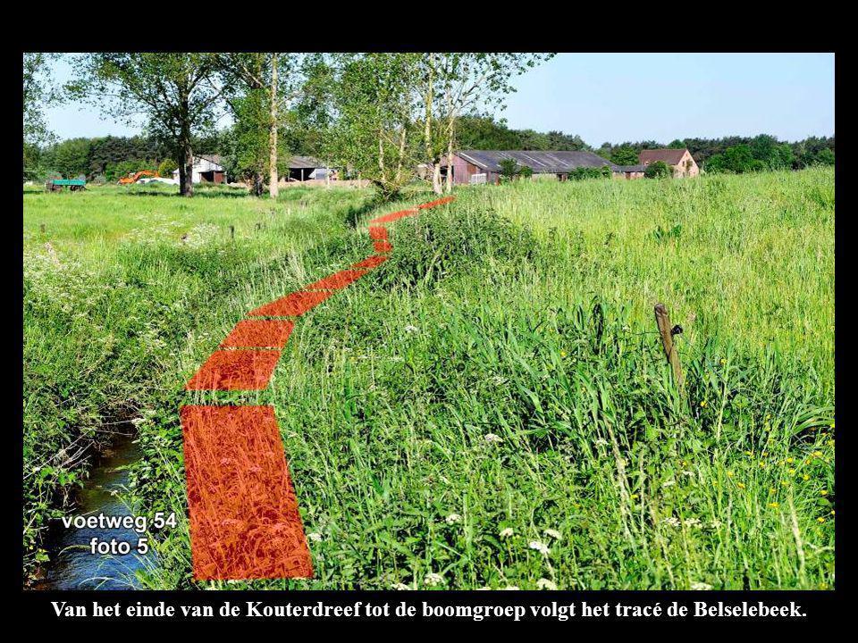 Van het einde van de Kouterdreef tot de boomgroep volgt het tracé de Belselebeek.