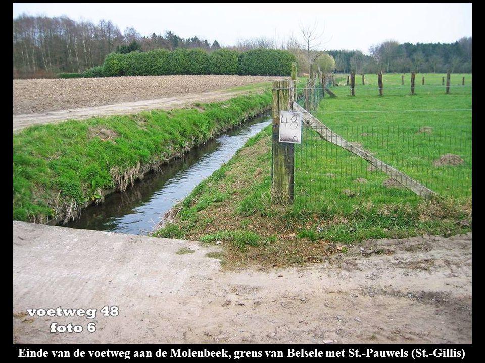 Einde van de voetweg aan de Molenbeek, grens van Belsele met St.-Pauwels (St.-Gillis)