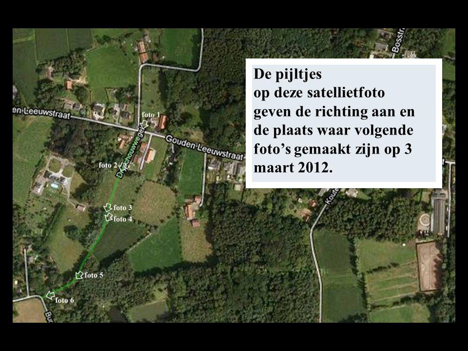De pijltjes op deze satellietfoto geven de richting aan en de plaats waar volgende foto's gemaakt zijn op 3 maart 2012.