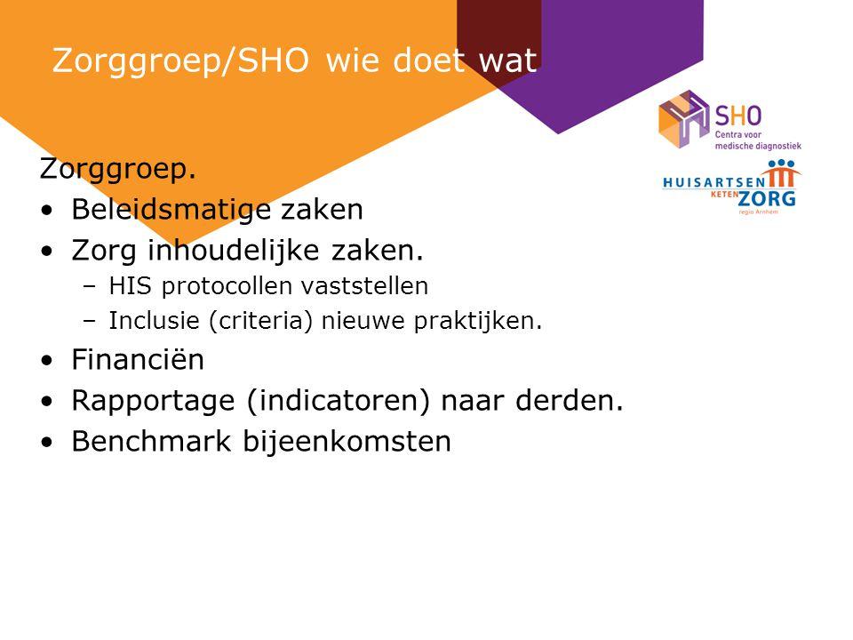 Zorggroep/SHO wie doet wat Zorggroep. Beleidsmatige zaken Zorg inhoudelijke zaken.