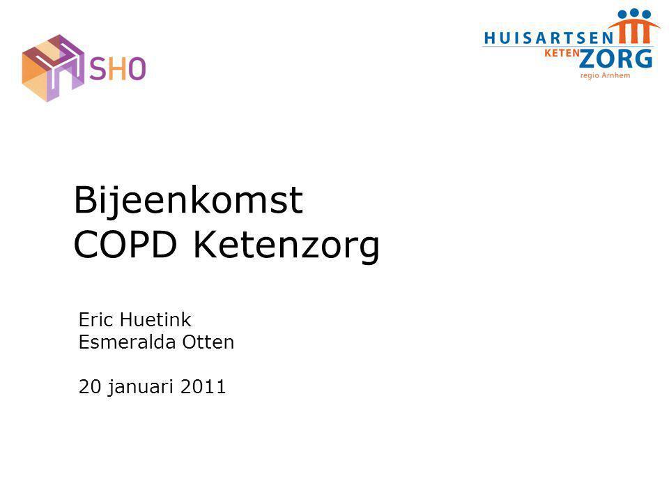 Bijeenkomst COPD Ketenzorg Eric Huetink Esmeralda Otten 20 januari 2011
