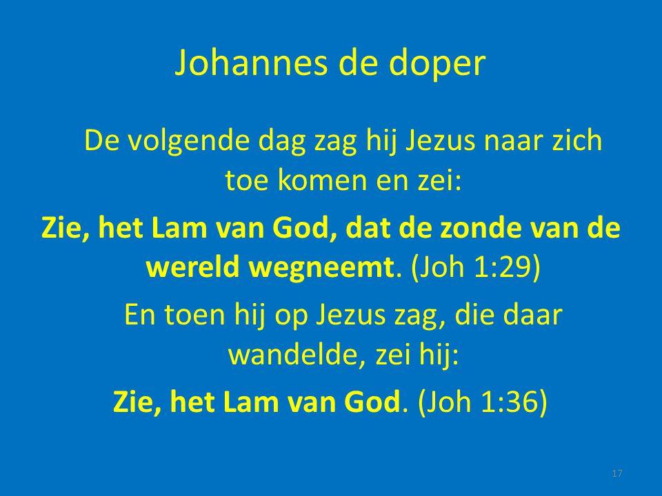 Johannes de doper De volgende dag zag hij Jezus naar zich toe komen en zei: Zie, het Lam van God, dat de zonde van de wereld wegneemt. (Joh 1:29) En t