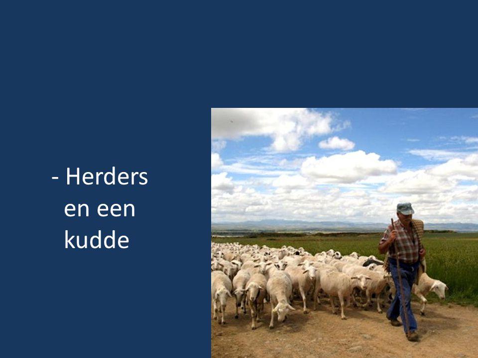 - Herders en een kudde