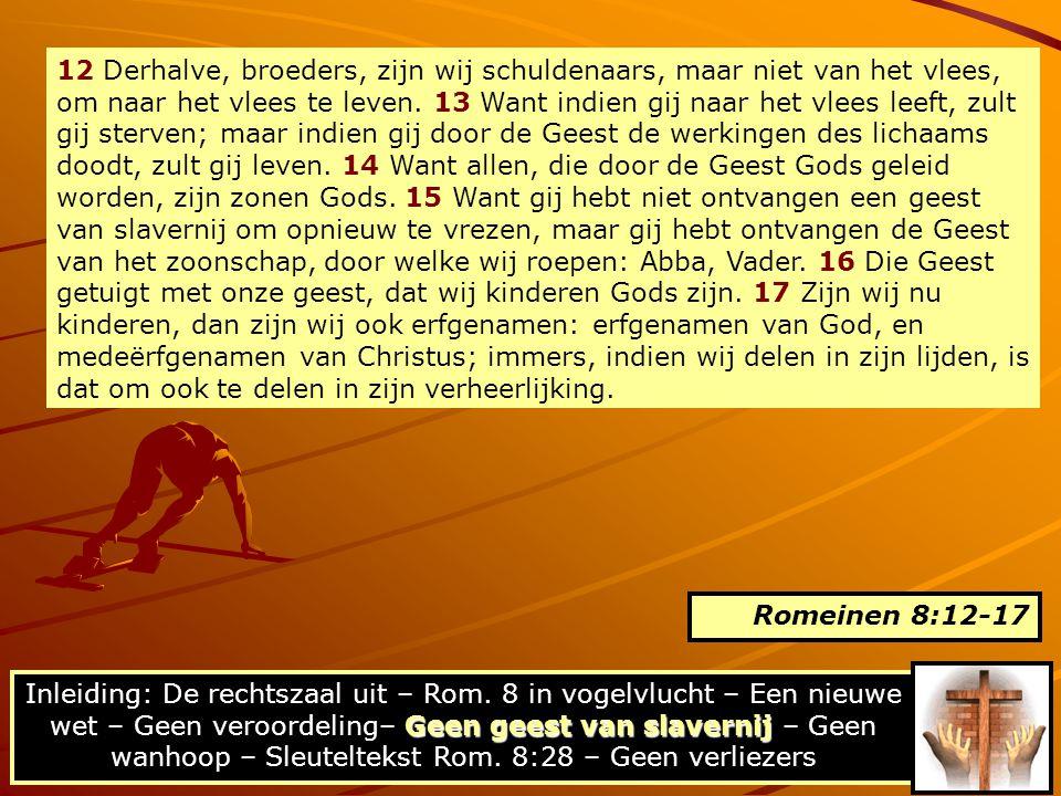 12 Derhalve, broeders, zijn wij schuldenaars, maar niet van het vlees, om naar het vlees te leven. 13 Want indien gij naar het vlees leeft, zult gij s