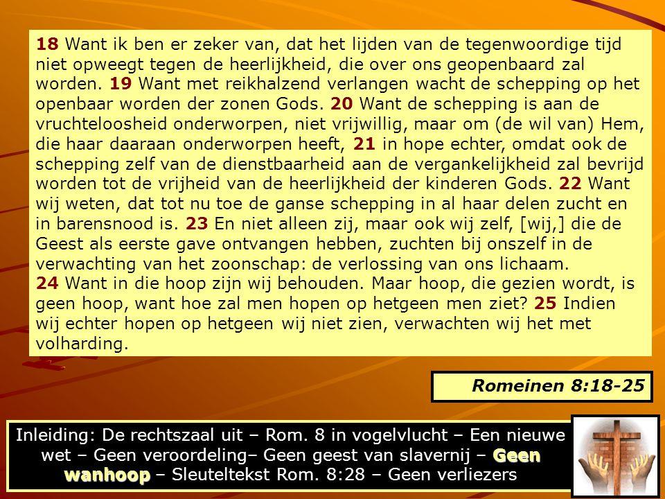 18 Want ik ben er zeker van, dat het lijden van de tegenwoordige tijd niet opweegt tegen de heerlijkheid, die over ons geopenbaard zal worden. 19 Want