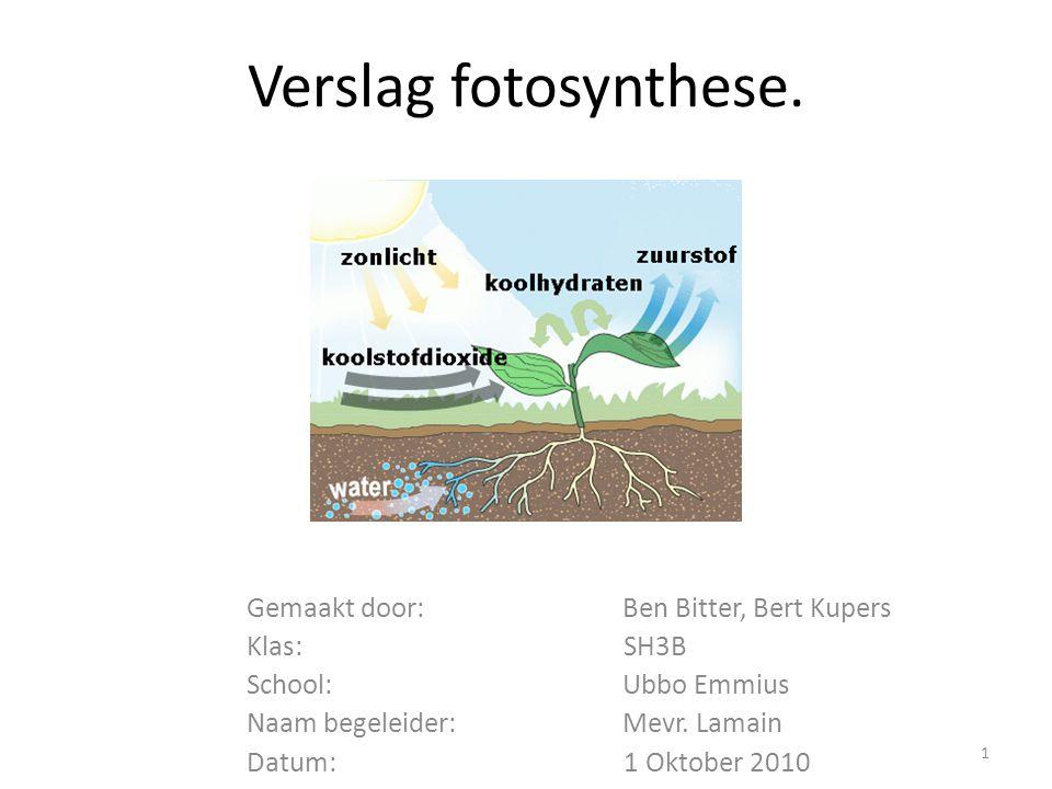 Verslag fotosynthese. Gemaakt door: Ben Bitter, Bert Kupers Klas: SH3B School: Ubbo Emmius Naam begeleider: Mevr. Lamain Datum: 1 Oktober 2010 1