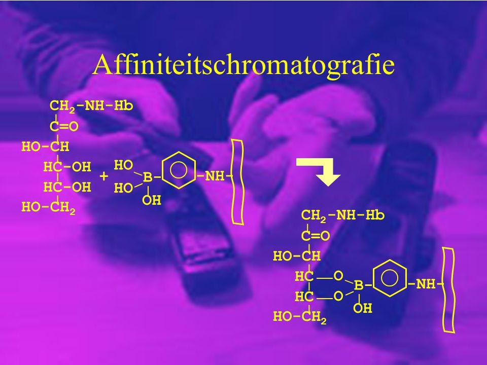 Affiniteitschromatografie CH 2 -NH-Hb C=O HC-OH HO-CH HC-OH _ _ _ _ _ HO-CH 2 HO OH B- -NH- + O O OH B- -NH- CH 2 -NH-Hb C=O HC HO-CH HC _ _ _ _ _ HO-