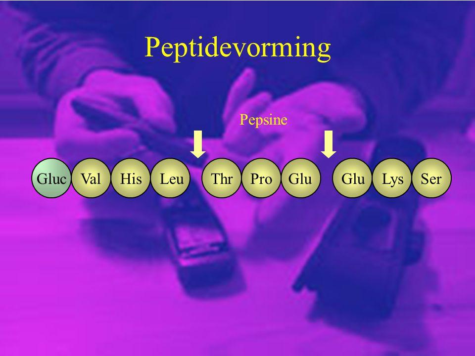 Peptidevorming ValGlucHisLeuThrProGlu LysSer Pepsine