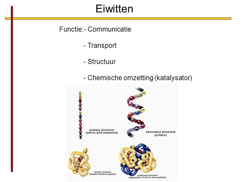 Eiwitten Functie:- Communicatie - Transport - Structuur - Chemische omzetting (katalysator)