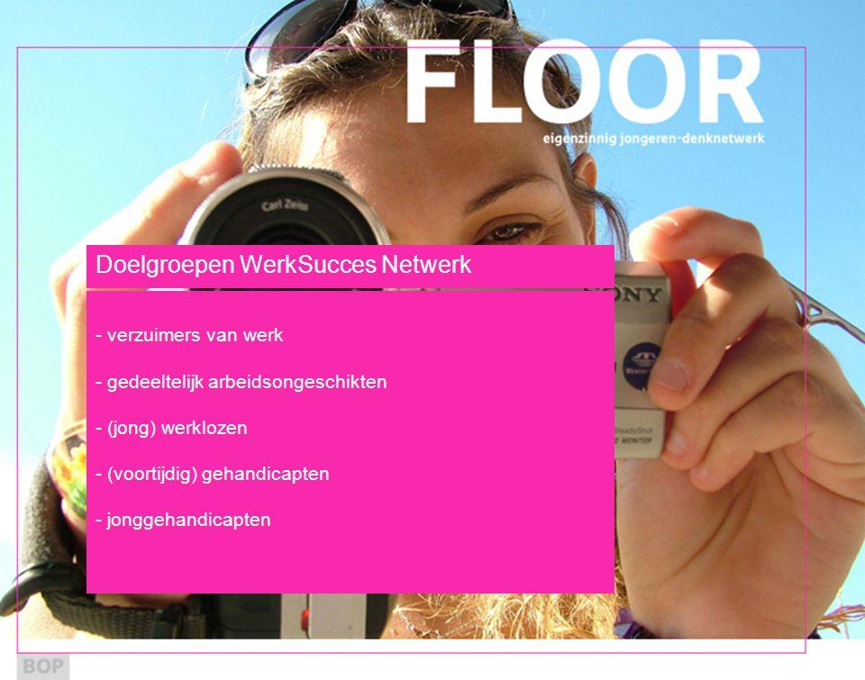 Doelgroepen WerkSucces Netwerk - verzuimers van werk - gedeeltelijk arbeidsongeschikten - (jong) werklozen - (voortijdig) gehandicapten - jonggehandicapten