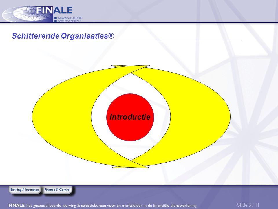 Slide 3 / 11 Schitterende Organisaties® Introductie