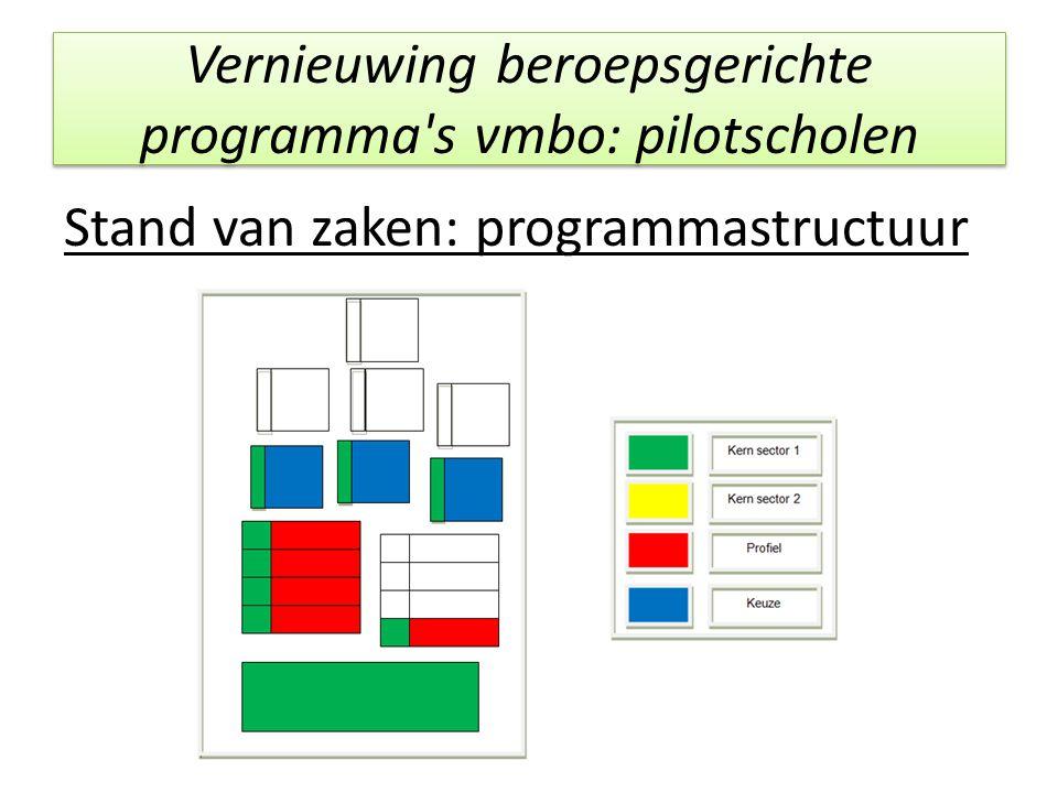 Vernieuwing beroepsgerichte programma's vmbo: pilotscholen Stand van zaken: programmastructuur