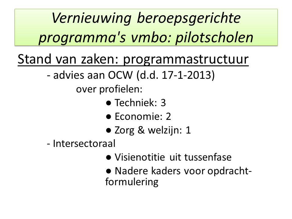 Vernieuwing beroepsgerichte programma's vmbo: pilotscholen Stand van zaken: programmastructuur - advies aan OCW (d.d. 17-1-2013) over profielen: ● Tec