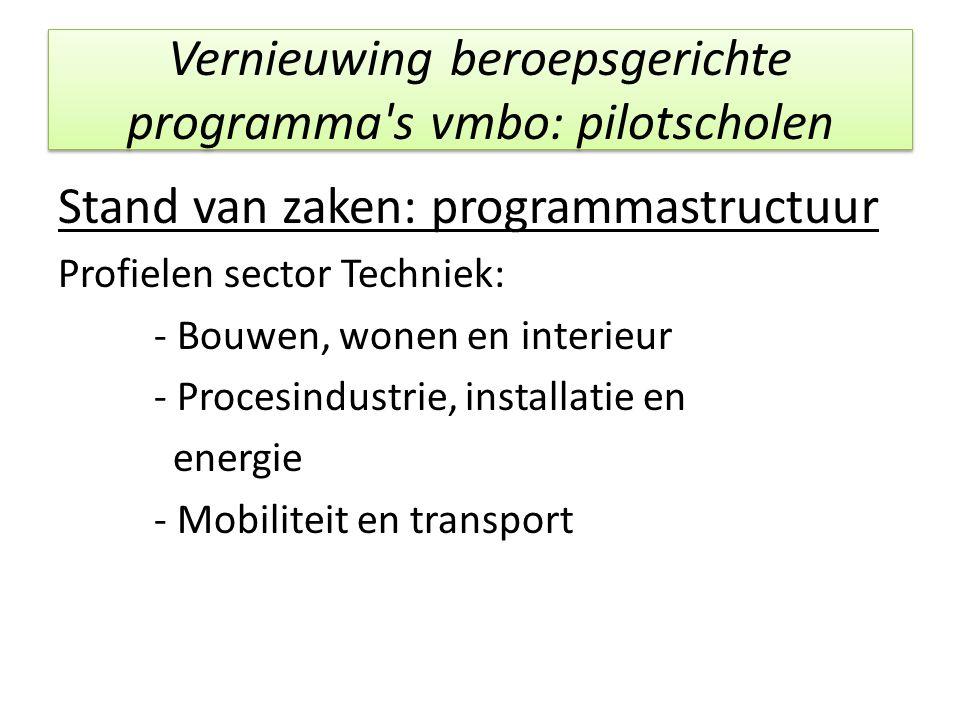 Vernieuwing beroepsgerichte programma's vmbo: pilotscholen Stand van zaken: programmastructuur Profielen sector Techniek: - Bouwen, wonen en interieur