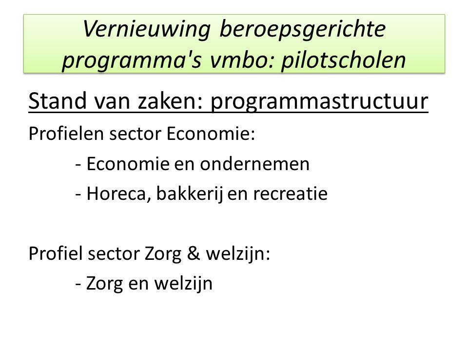 Vernieuwing beroepsgerichte programma's vmbo: pilotscholen Stand van zaken: programmastructuur Profielen sector Economie: - Economie en ondernemen - H