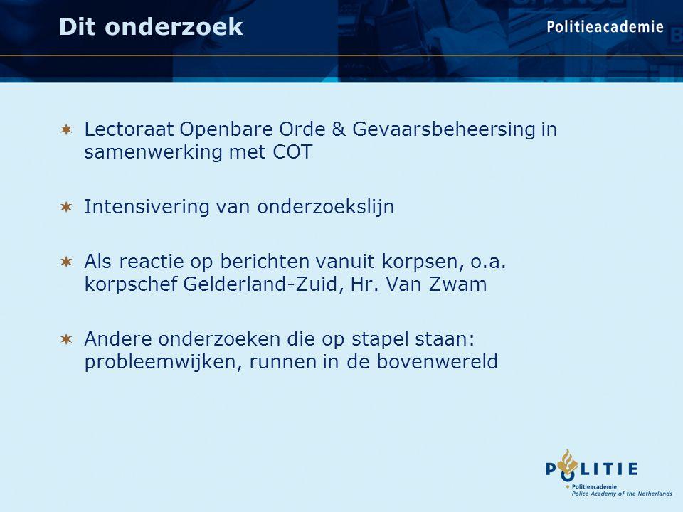 Hoezo rustig?! Een onderzoek naar het verloop van jaarwisselingen in Nederland