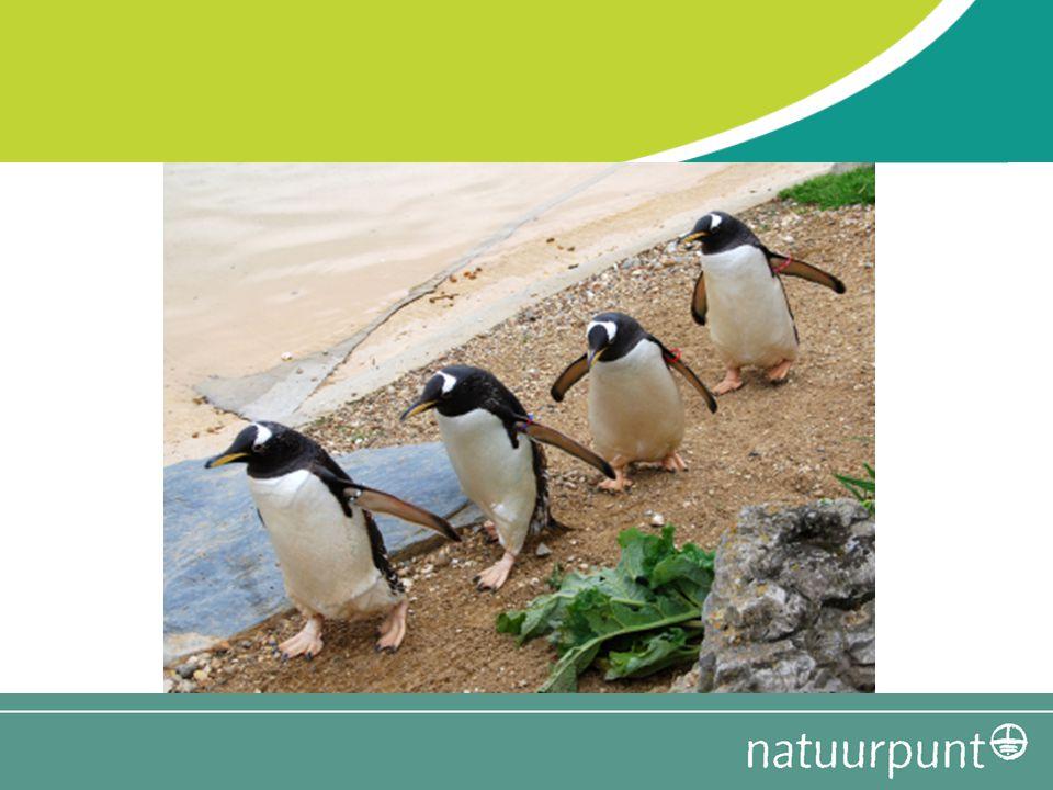 Agenda Samenvatting 'Zin in natuur.studie' Toepassing op jouw werkgroep