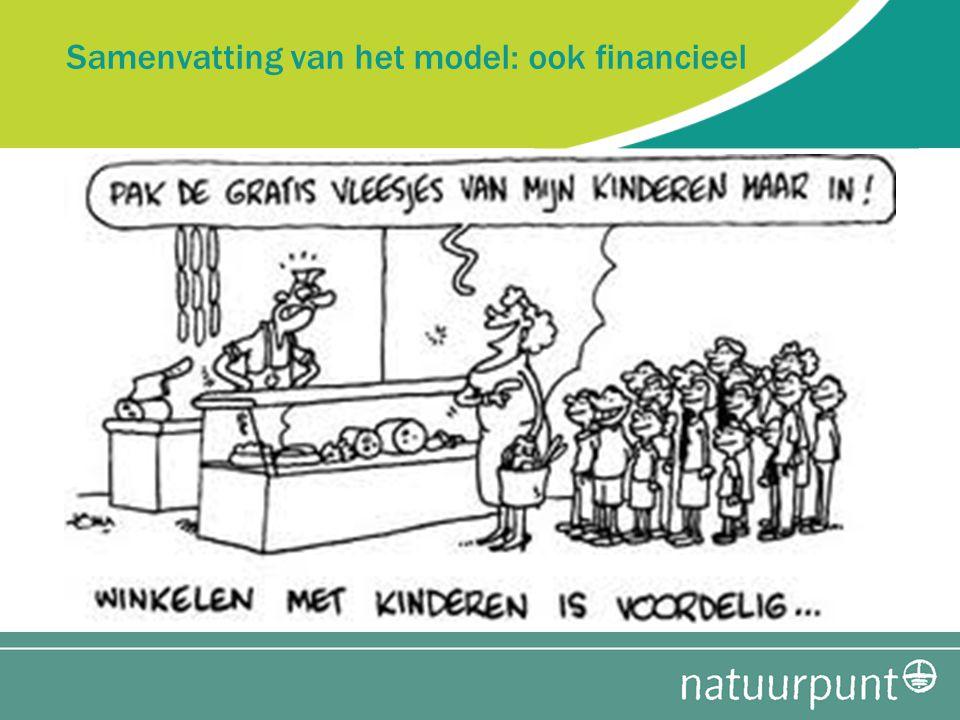 Samenvatting van het model: ook financieel