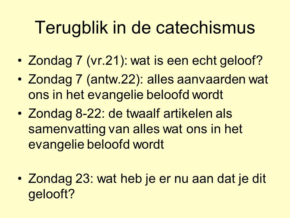 Terugblik in de catechismus Zondag 7 (vr.21): wat is een echt geloof.