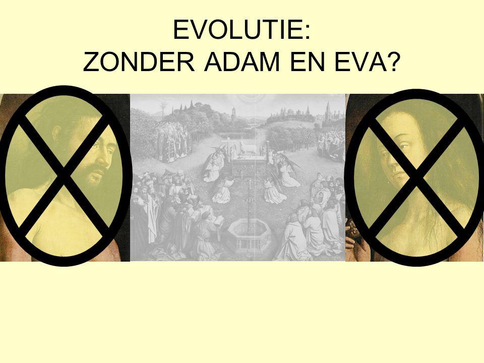 EVOLUTIE: ZONDER ADAM EN EVA?