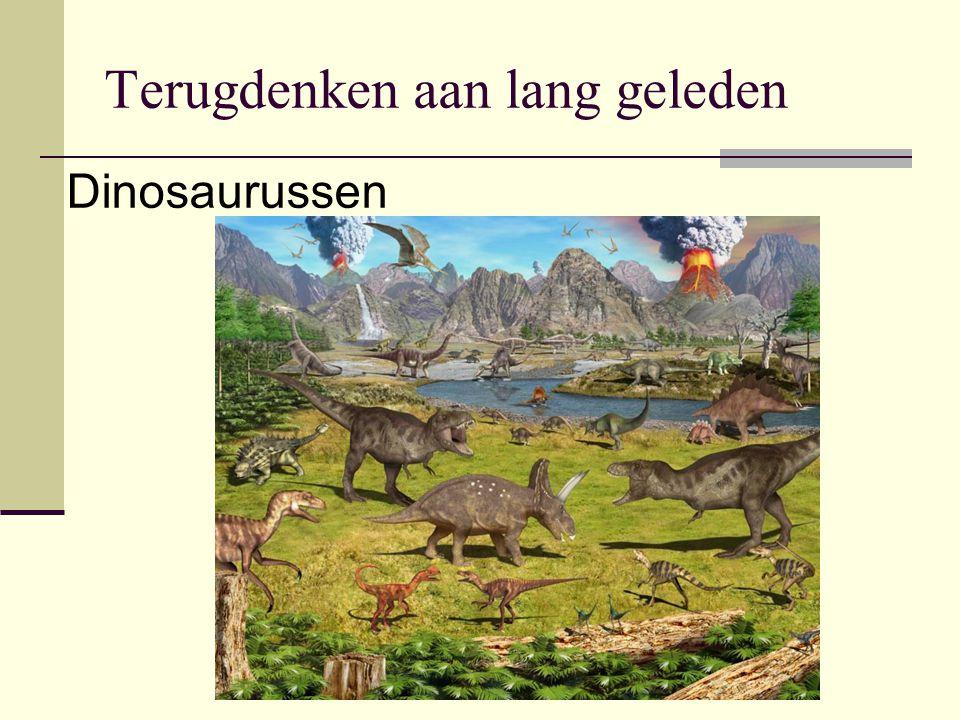 Terugdenken aan lang geleden Dinosaurussen Mensen