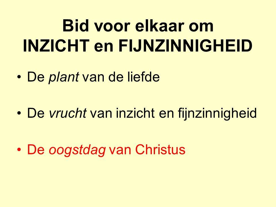Bid voor elkaar om INZICHT en FIJNZINNIGHEID De plant van de liefde De vrucht van inzicht en fijnzinnigheid De oogstdag van Christus