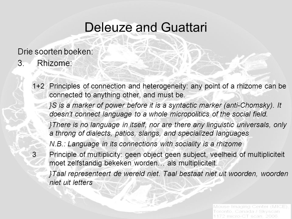 Deleuze and Guattari Drie soorten boeken: 3.Rhizome: 1+2Principles of connection and heterogeneity: any point of a rhizome can be connected to anything other, and must be.