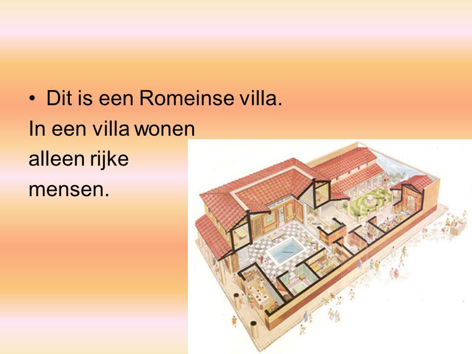 Dit is een Romeinse villa. In een villa wonen alleen rijke mensen.