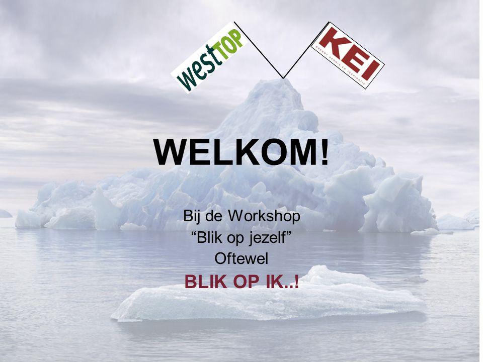 WELKOM! Bij de Workshop Blik op jezelf Oftewel BLIK OP IK..!