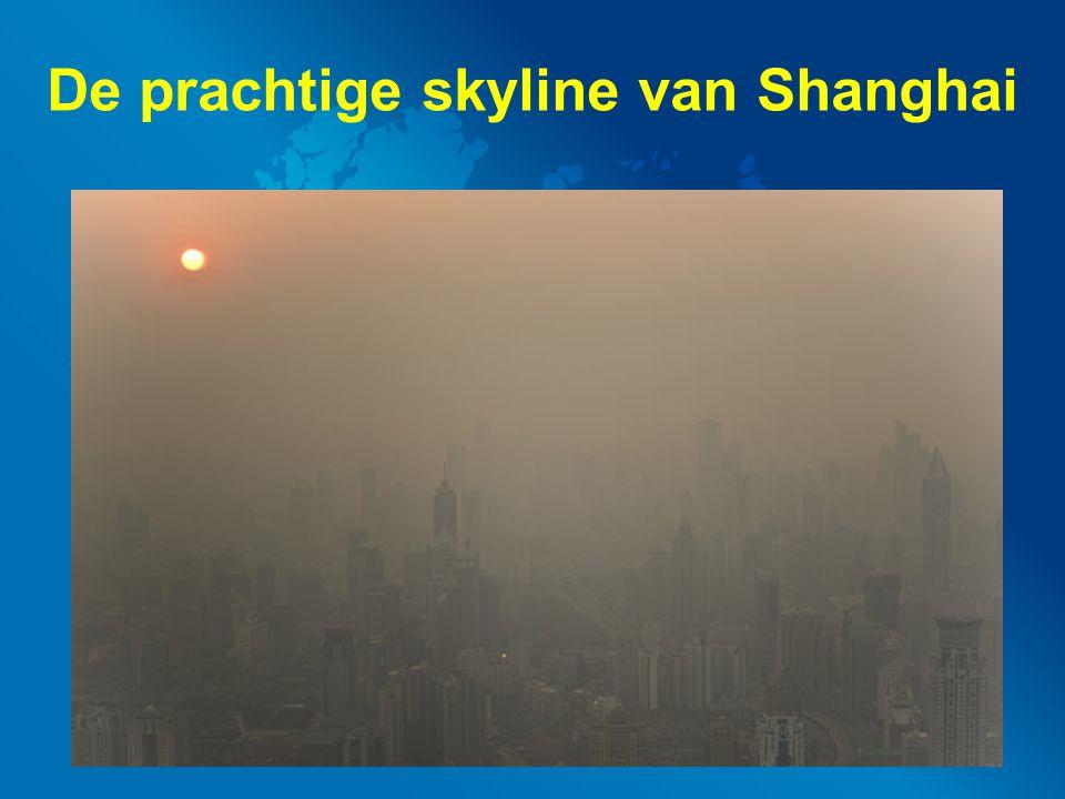 De prachtige skyline van Shanghai