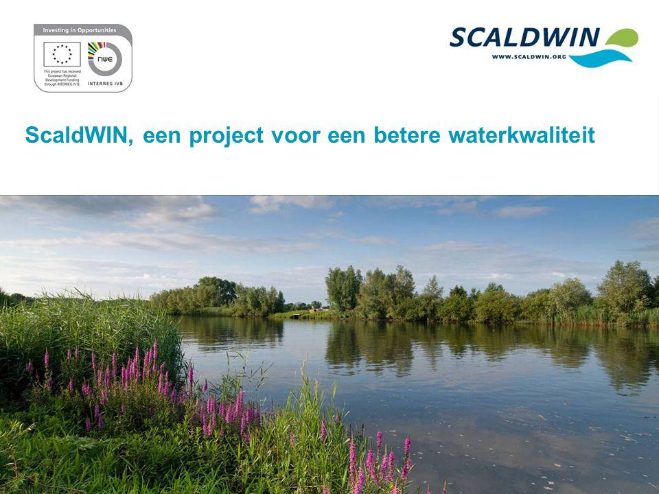 ScaldWIN, een project voor een betere waterkwaliteit