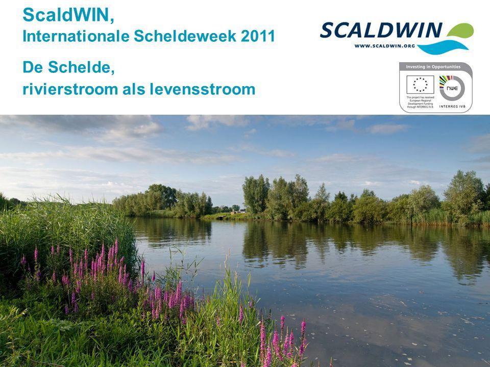 ScaldWIN, Internationale Scheldeweek 2011 De Schelde, rivierstroom als levensstroom