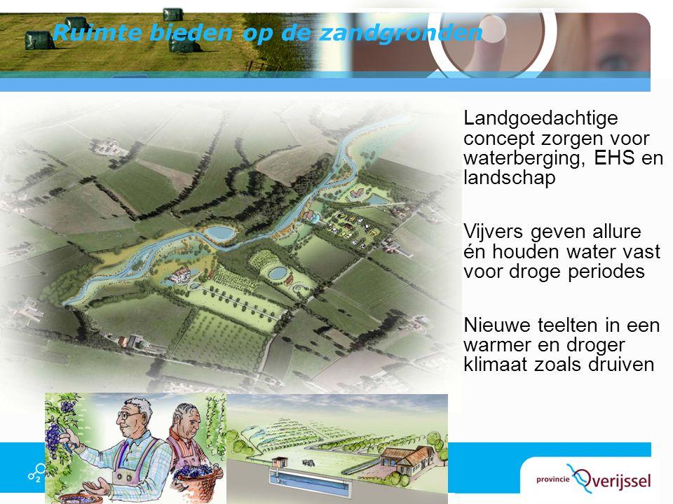 Ruimte bieden op de zandgronden Landgoedachtige concept zorgen voor waterberging, EHS en landschap Vijvers geven allure én houden water vast voor drog