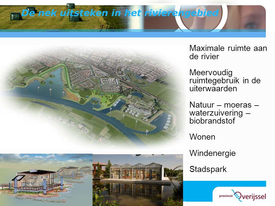 De nek uitsteken in het rivierengebied Maximale ruimte aan de rivier Meervoudig ruimtegebruik in de uiterwaarden Natuur – moeras – waterzuivering – bi