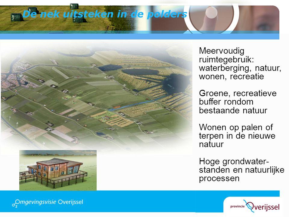 De nek uitsteken in de polders Meervoudig ruimtegebruik: waterberging, natuur, wonen, recreatie Groene, recreatieve buffer rondom bestaande natuur Won