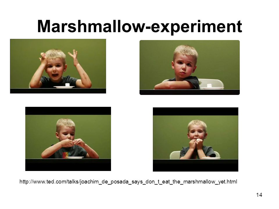14 Marshmallow-experiment http://www.ted.com/talks/joachim_de_posada_says_don_t_eat_the_marshmallow_yet.html