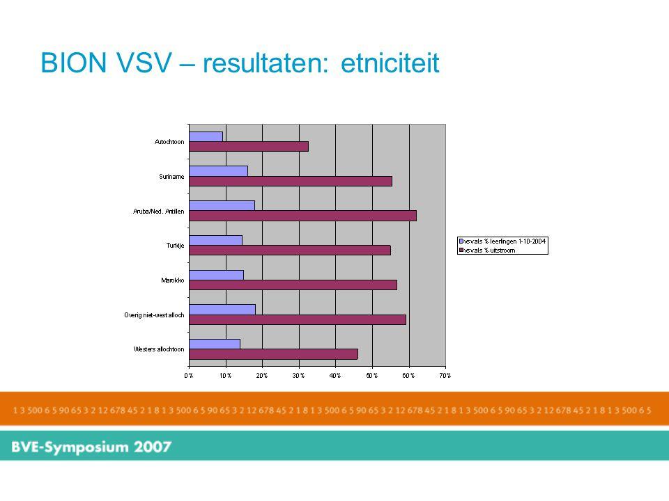 BION VSV – resultaten: etniciteit