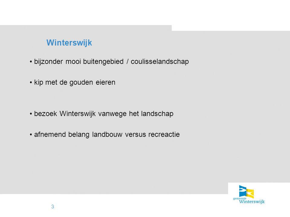 4 Wat doet Winterswijk er aan.