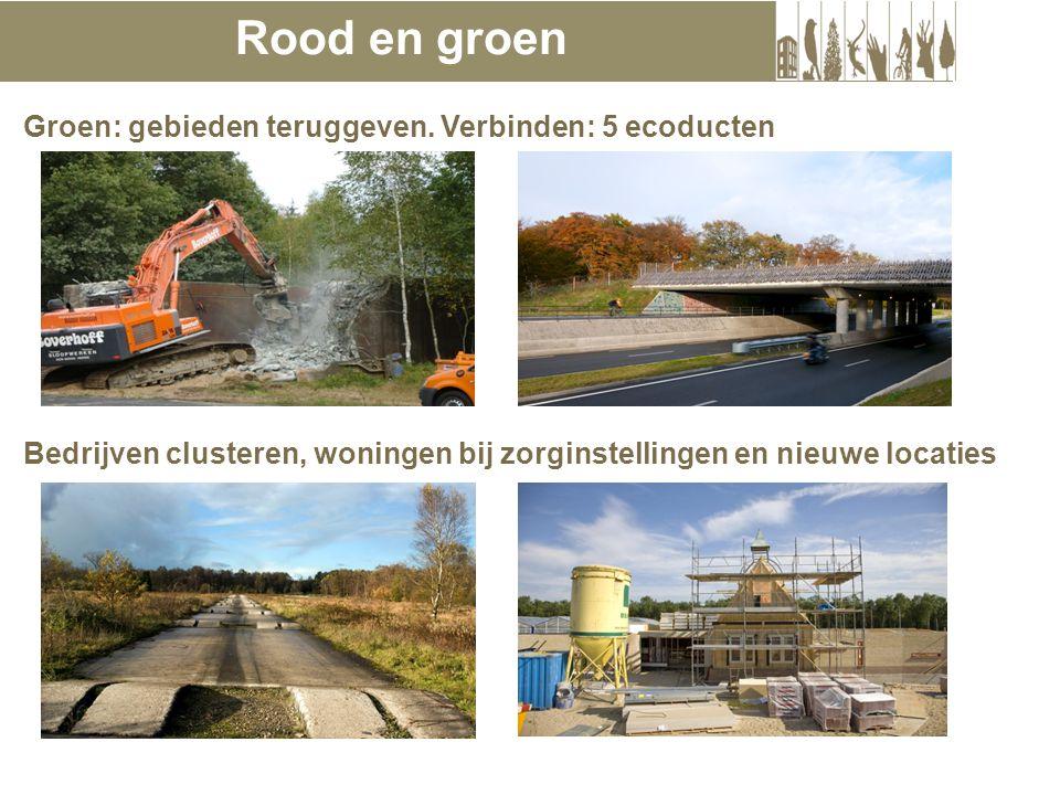 Bedrijven clusteren, woningen bij zorginstellingen en nieuwe locaties Rood en groen Groen: gebieden teruggeven.