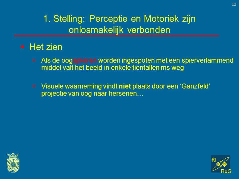 KI RuG 13  Het zien 1. Stelling: Perceptie en Motoriek zijn onlosmakelijk verbonden  Als de oogspieren worden ingespoten met een spierverlammend mid