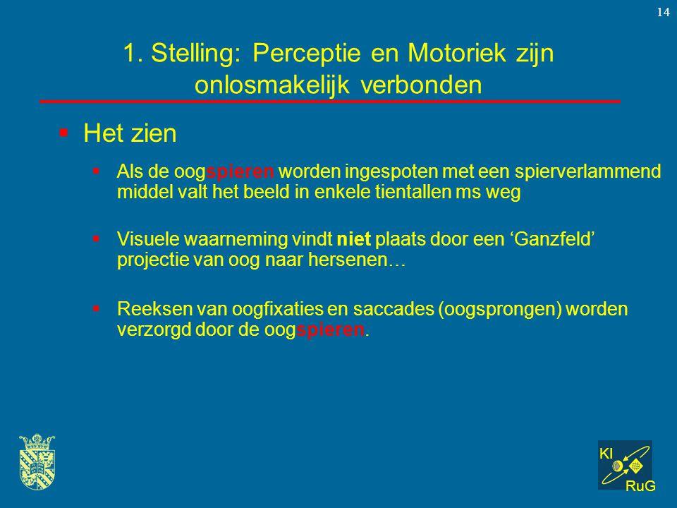 KI RuG 14  Het zien 1. Stelling: Perceptie en Motoriek zijn onlosmakelijk verbonden  Als de oogspieren worden ingespoten met een spierverlammend mid