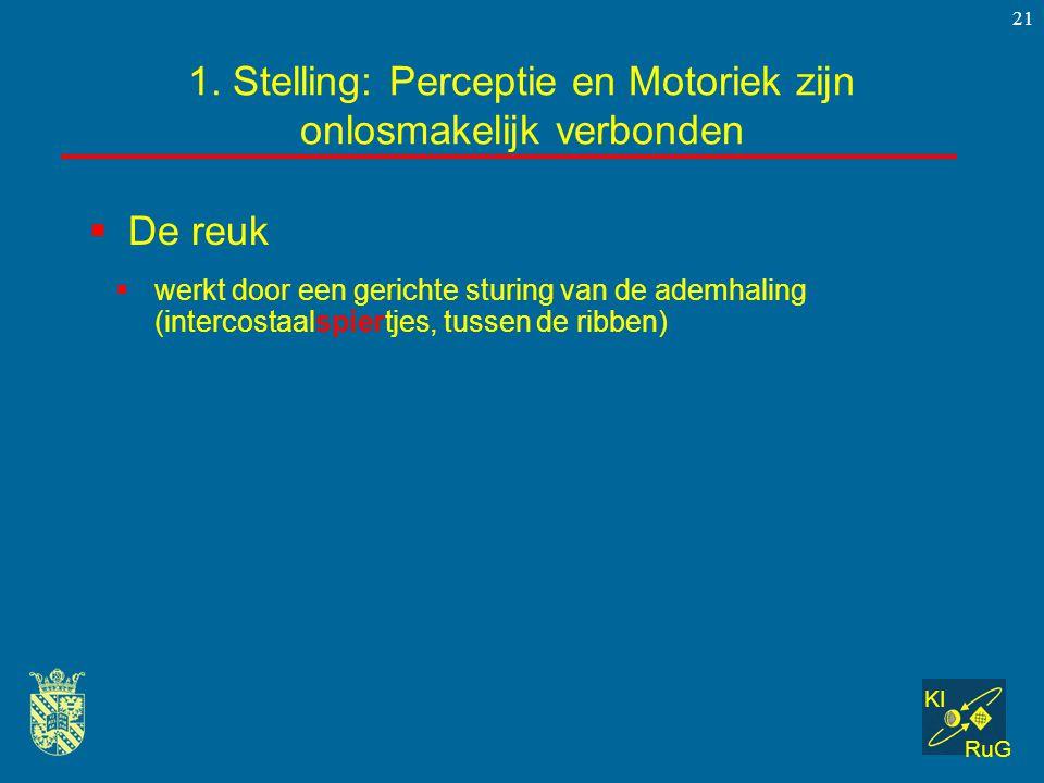 KI RuG 21  De reuk 1. Stelling: Perceptie en Motoriek zijn onlosmakelijk verbonden  werkt door een gerichte sturing van de ademhaling (intercostaals