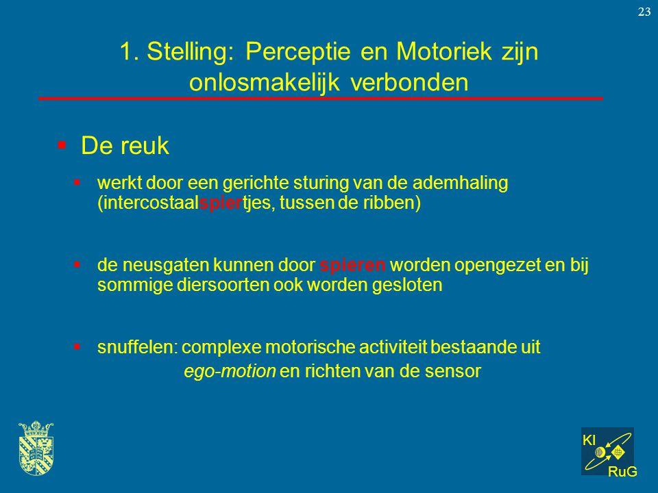KI RuG 23  De reuk 1. Stelling: Perceptie en Motoriek zijn onlosmakelijk verbonden  werkt door een gerichte sturing van de ademhaling (intercostaals