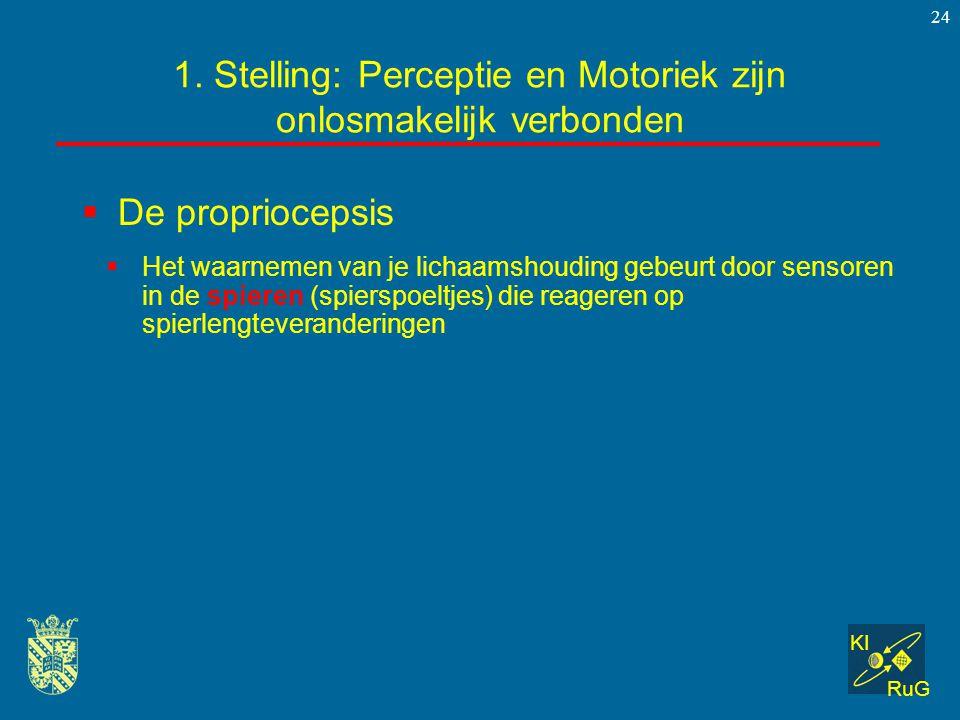 KI RuG 24  De propriocepsis 1. Stelling: Perceptie en Motoriek zijn onlosmakelijk verbonden  Het waarnemen van je lichaamshouding gebeurt door senso