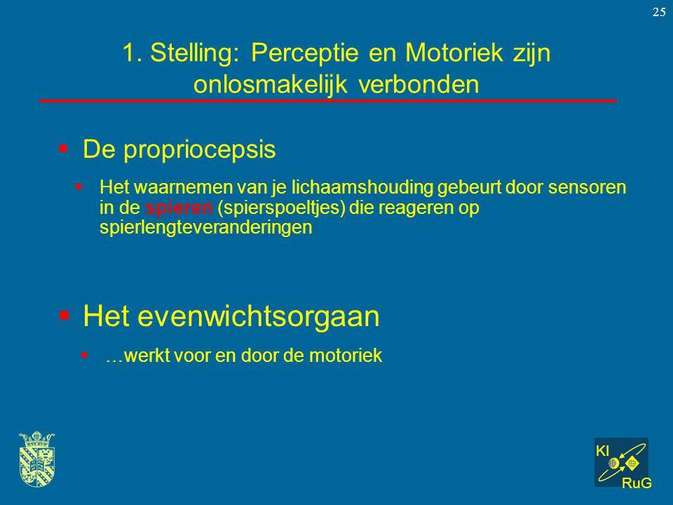 KI RuG 25  De propriocepsis 1. Stelling: Perceptie en Motoriek zijn onlosmakelijk verbonden  …werkt voor en door de motoriek  Het evenwichtsorgaan