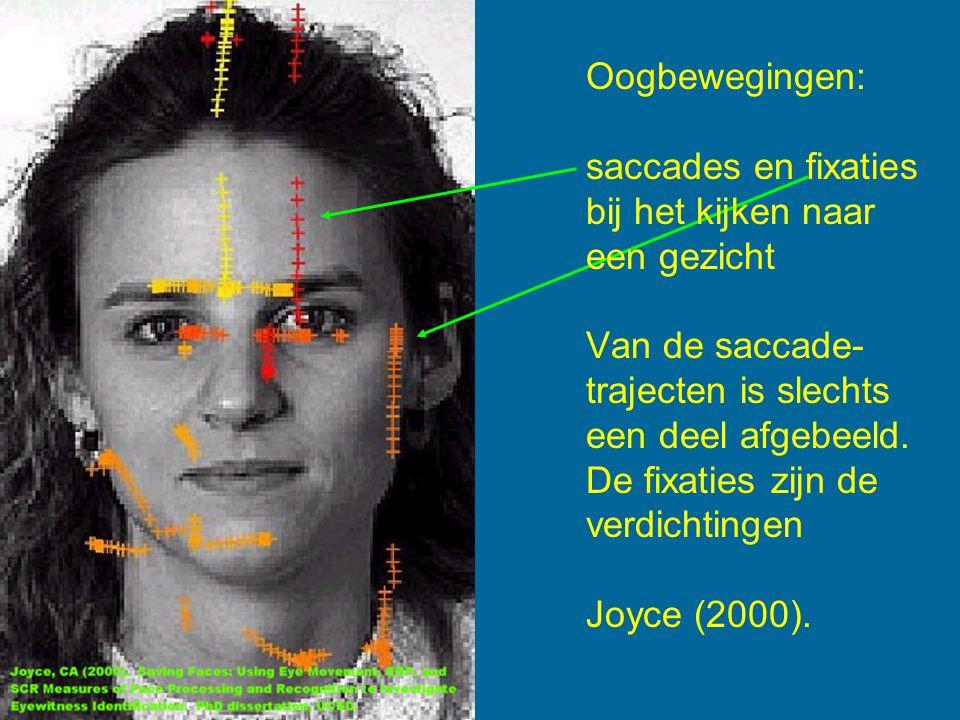 Oogbewegingen: saccades en fixaties bij het kijken naar een gezicht Van de saccade- trajecten is slechts een deel afgebeeld. De fixaties zijn de verdi