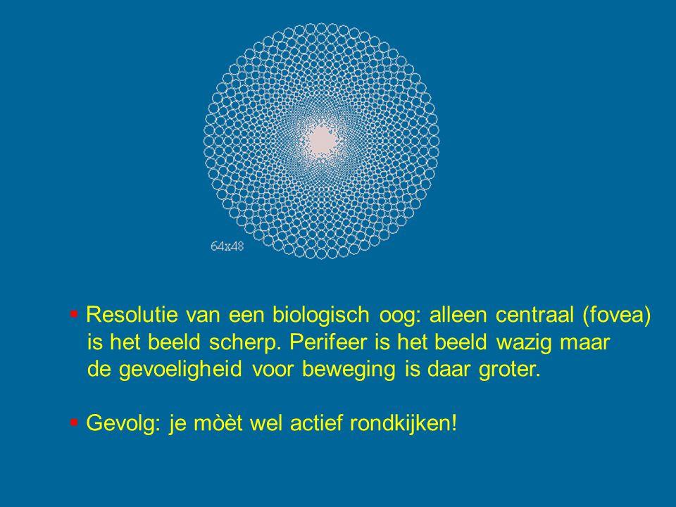  Resolutie van een biologisch oog: alleen centraal (fovea) is het beeld scherp. Perifeer is het beeld wazig maar de gevoeligheid voor beweging is daa