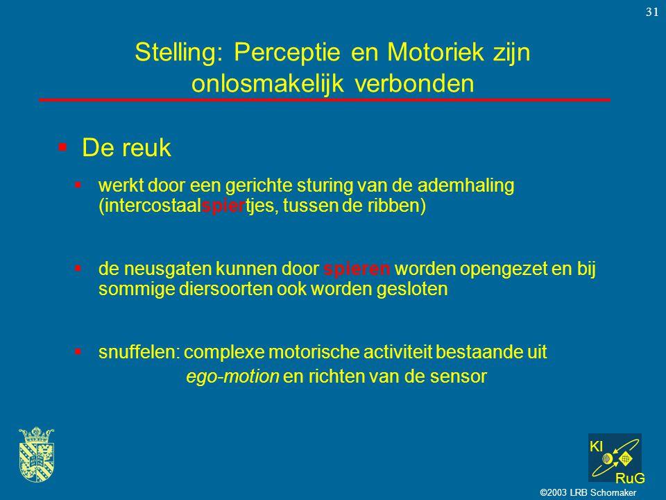 KI RuG ©2003 LRB Schomaker 31  De reuk Stelling: Perceptie en Motoriek zijn onlosmakelijk verbonden  werkt door een gerichte sturing van de ademhali